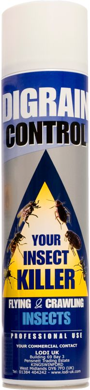 Professional Carpet Beetle & Insect Destroyer Spray 600ml
