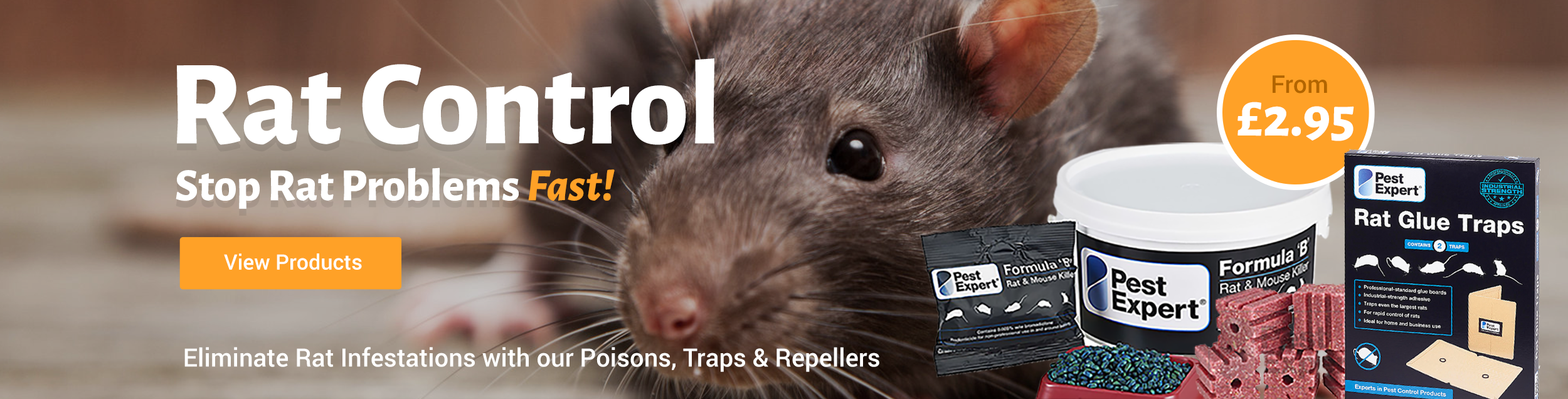 Pest Control Supplies co uk How to Get Rid of Cluster Flies